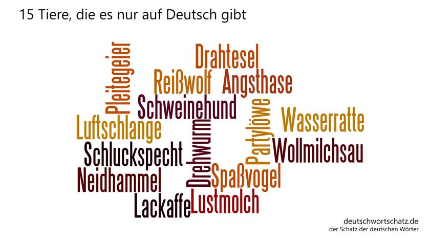 15 Tiere im deutschen Sprachraum