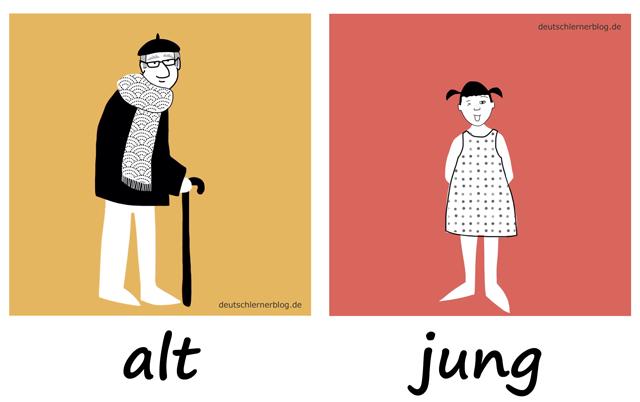 alt - jung - Adjektive - Deutsch Adjektive - deutsche Adjektive - Adjektive Deutsch - Adjektive Übungen - Adjektive Bilder