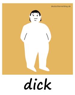 dick - Adjektive - Bilder - Wortschatz mit Bildern - Wortschatzbilder
