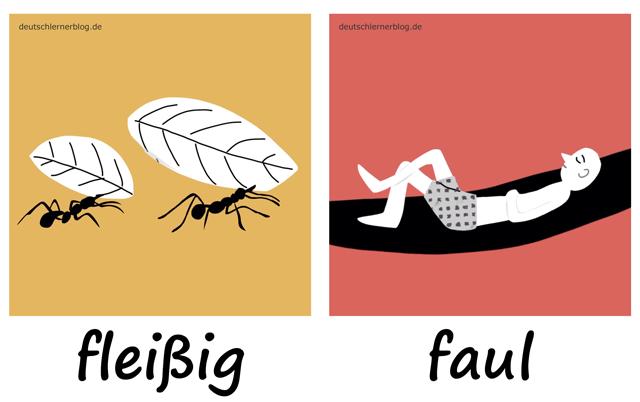 fleißig - faul - Adjektive - Deutsch Adjektive - deutsche Adjektive - Adjektive Deutsch - Adjektive Übungen - Wortschatz Deutsch - Adjektive Bilder - Adjektive mit Bildern