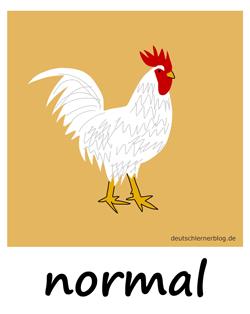normal - Huhn - Adjektive - Bilder - Wortschatz mit Bildern - Wortschatzbilder