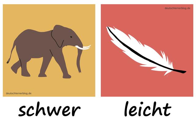 schwer - leicht- Elefant - Adjektive - Deutsch Adjektive - deutsche Adjektive - Adjektive Deutsch - Adjektive Übungen - Wortschatz Deutsch - Adjektive Bilder - Adjektive mit Bildern
