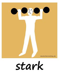 stark - Muskeln - Adjektive - Bilder - Wortschatz mit Bildern - Wortschatzbilder