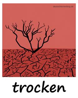 trocken - Adjektive - Bilder - Wortschatz mit Bildern - Wortschatzbilder