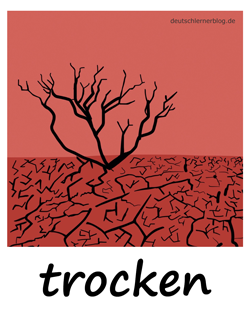 trocken_Adjektive_Übung_Deutsch_lernen_125x157