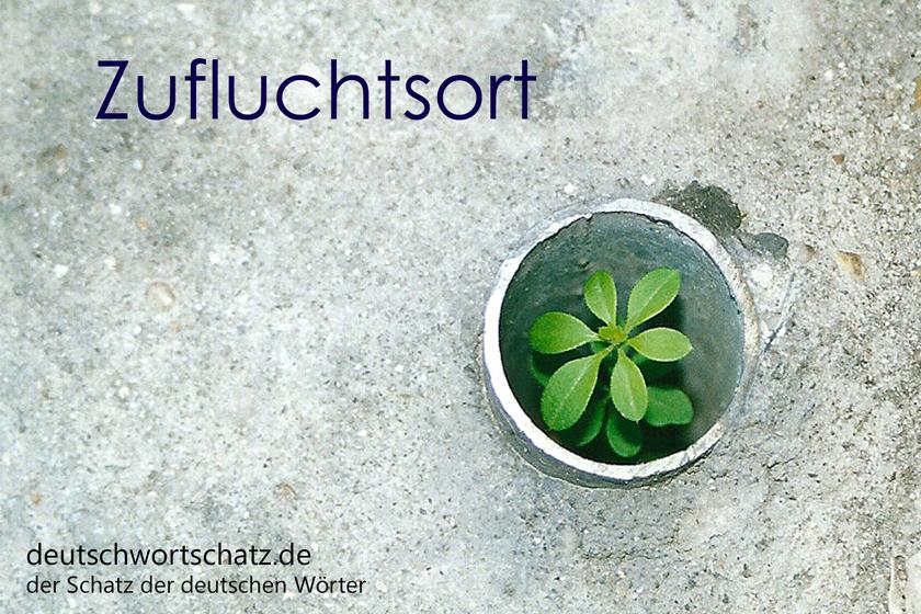 Deutsch für Flüchtlinge - Zufluchtsort
