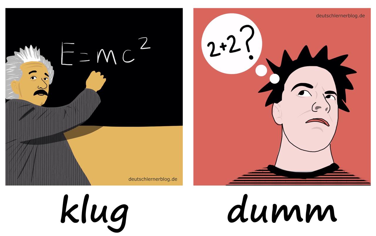 klug - dumm - Adjektive - Deutsch Adjektive - deutsche Adjektive - Adjektive Deutsch - Adjektive Übungen - Wortschatz Deutsch - Adjektive Bilder - Adjektive mit Bildern