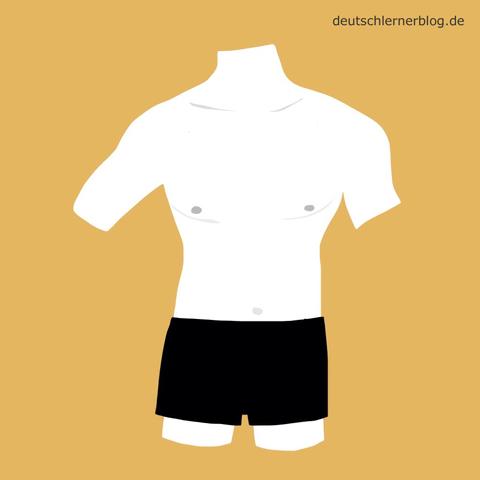 männlich - Oberkörper - nackt