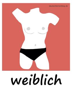 weiblich - nackt - Frau - nackte Frau - topless