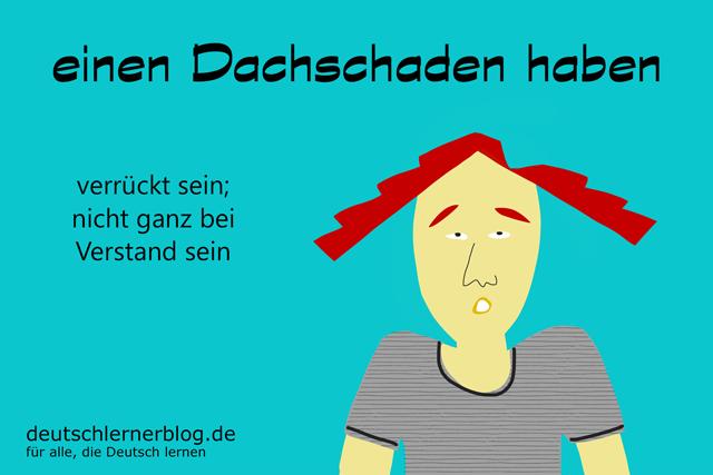 Dachschaden haben - Redewendungen Bilder - Wortschatz Bilder - Deutsch lernen - Deutschlernerblog