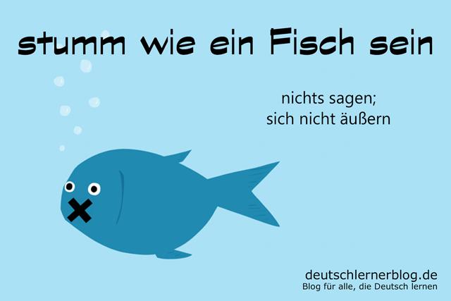 stumm wie ein Fisch - Redewendungen Bilder - Wortschatz Bilder - Deutsch lernen - Deutschlernerblog