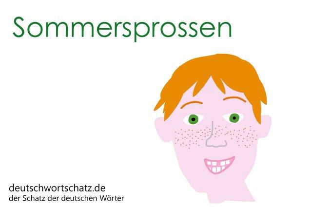 Sommersprossen im Gesicht - Sommersprossen Bild - Woerter mit Bildern lernen