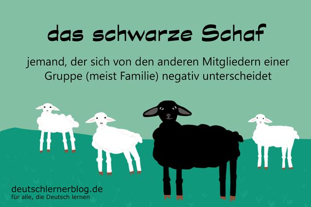 das schwarze Schaf sein - schwarzes Schaf