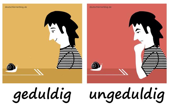 geduldig - ungeduldig - Geduld - Ungeduld - Adjektive lernen - 200 wichtigste deutsche Adjektive mit Bildern - Wortschatz mit Bildern