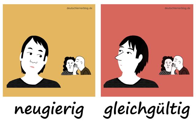 neugierig - gleichgültig - Neugier - Adjektive lernen - 200 wichtigste deutsche Adjektive mit Bildern - Wortschatz mit Bildern