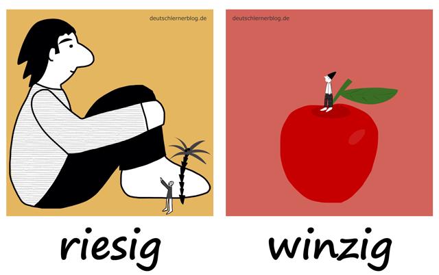 riesig - winzig - Riese - Zwerg - Liste Adjektive - deutsch Adjektive Liste