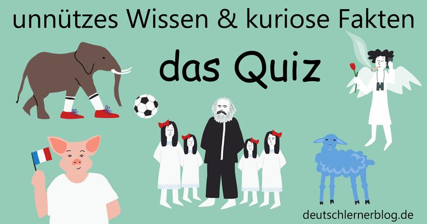 Unnutzes Wissen Und Kuriose Fakten Das Grosse Quiz