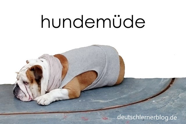 hundemüde - zusammengesetzte Adjektive - Hund müde