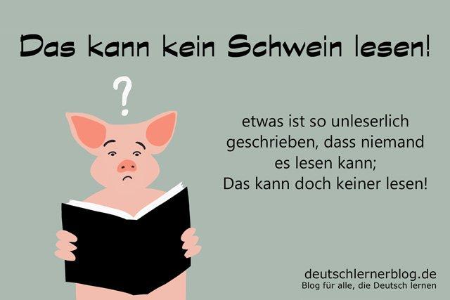 Das kann kein Schwein lesen