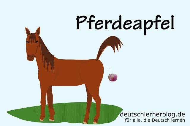 Pferdeapfel - deutsches Obst - deutsches Essen - deutsche Rezepte - deutsche Speisen