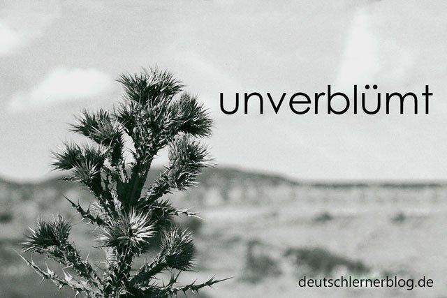 unverblümt - Wörter Deutsch - deutsche Wörter