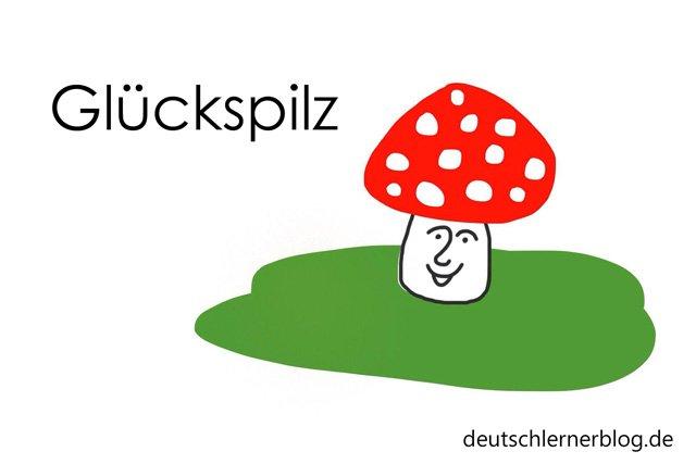 Glückspilz - Wortschatz lernen - Vokabeln lernen - Deutsch lernen - mit Bildern lernen