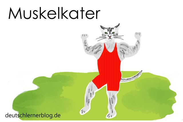 Muskelkater - Wortschatz lernen - Vokabeln lernen - Deutsch lernen - mit Bildern lernen