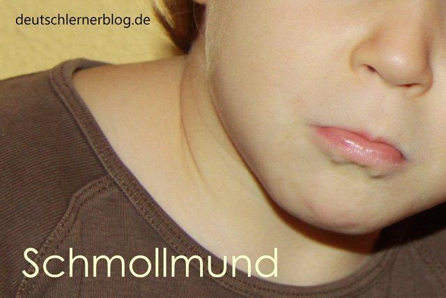 Schmollmund - Wortschatz lernen - Vokabeln lernen - Deutsch lernen - mit Bildern lernen