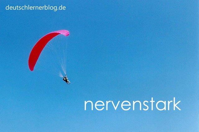 nervenstark - Gleitschirm - Paarflug - starke Nerven