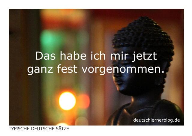 Das habe ich mir jetzt ganz fest vorgenommen - kostenlose Postkarten - typische deutsche Sätze - Deutsch lernen