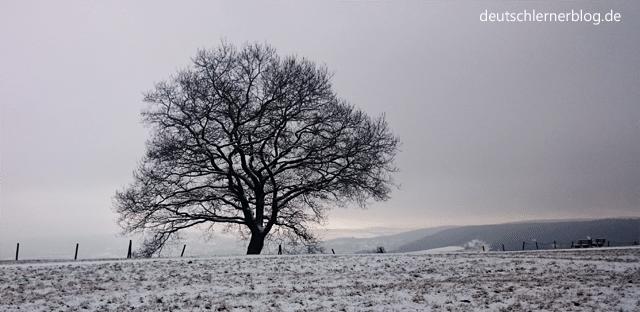 Wetter - Winterlandschaft