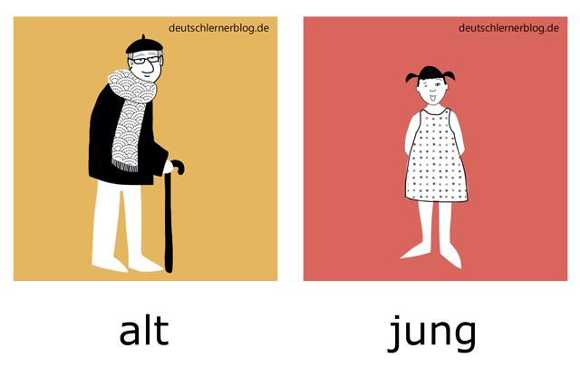 alt - jung - alter Mann - junges Mädchen - Adjektive Bilder