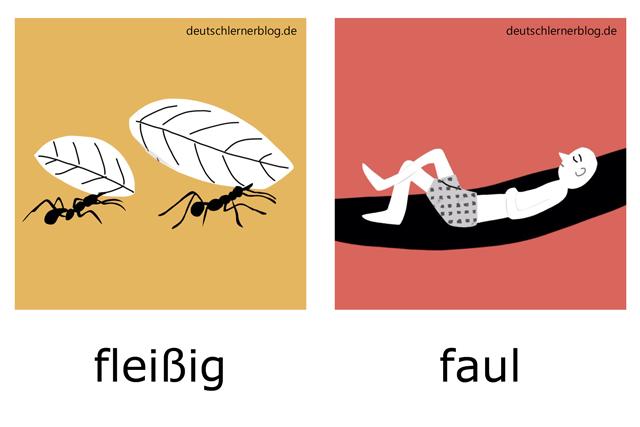 fleißig - faul - Adjektive Bilder