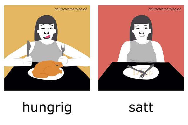 hungrig - satt - Adjektive illustriert