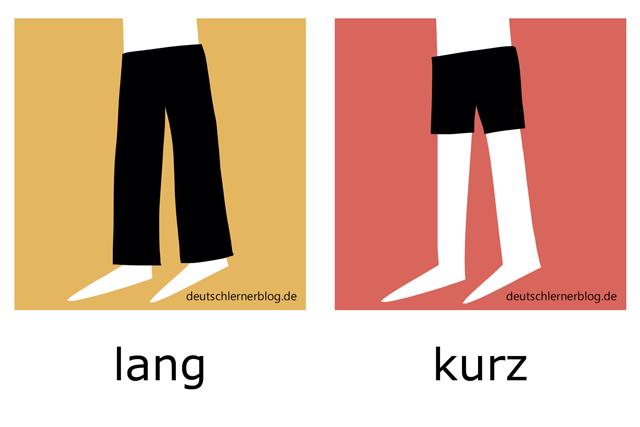 lang - kurz - Bilder Adjektive illustriert