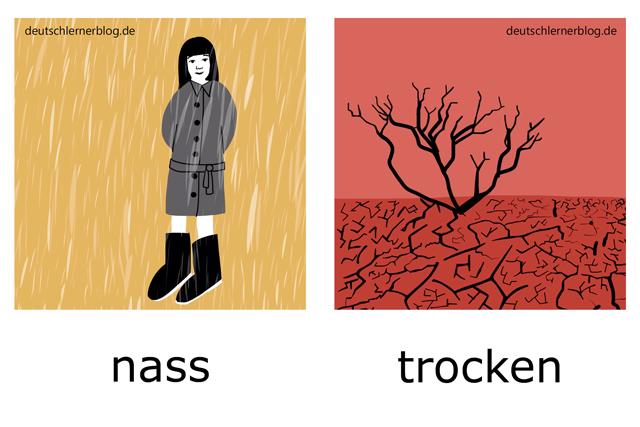 nass - trocken