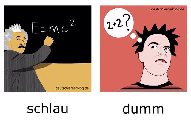 schlau - dumm