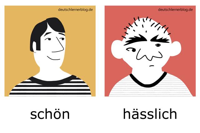 schön - hässlich - Adjektive