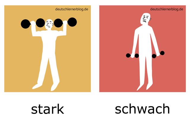 stark - schwach - Adjektive