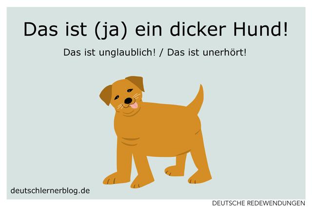 Das ist ja ein dicker Hund! - Redewendungen - Redensarten