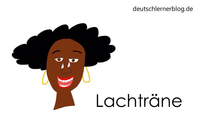 Lachträne - Wortschatz mit Bildern lernen