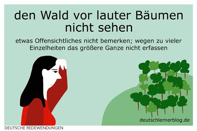 den Wald vor lauter Bäumen nicht sehen - Redewendungen - Redensarten