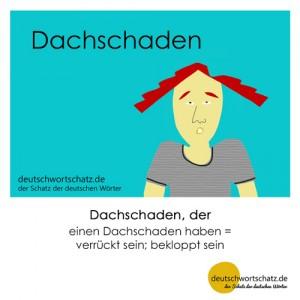 Dachschaden - Wortschatz Deutsch Bilder