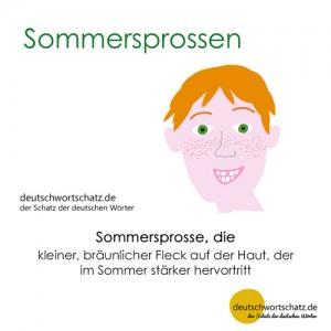 Sommersprossen - Wortschatz Deutsch Bilder