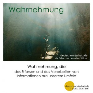 Wahrnehmung - Wortschatz Deutsch Bilder