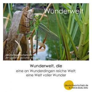 Wunderwelt - Wortschatz Deutsch Bilder