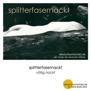 splitterfasernackt - Wortschatz Deutsch Bilder