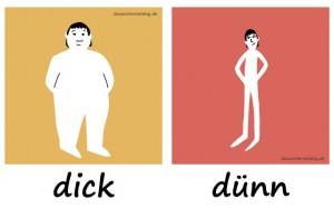 dick - dünn - Adjektive - Gegensatzpaare