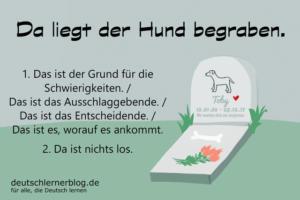Da-liegt-der-Hund-begraben-Redewendungen-deutschlernerblog