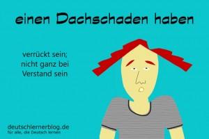 Dachschaden Redewendungen Bilder deutschlernerblog